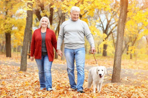 Középkorú házaspár őszi erdőben kézen fogva sétál kutyájukkal együtt.