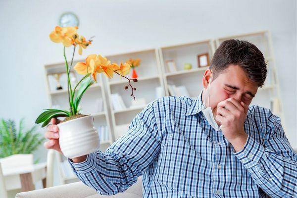 Kockás inges férfi otthonában virágcserepet tart a kezében, közben allergia miatt tüsszent.