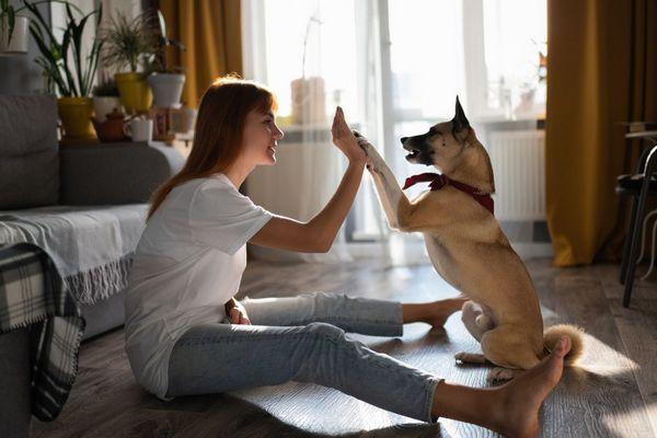 Fiatal lány az otthonában a kutyájával játszik.