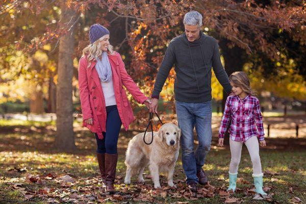 Őszi erdőben egy család, anya, apa és a kislányuk a kutyájukkal sétál.