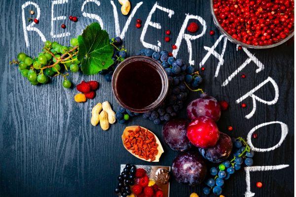 Egy sötét kék színű asztalon rezveratolt tartalmazó gyümölcsök, szőlő, szilva, goji bogyó, fekete ribizli, málna, vörös áfonya, gránátalma és vörös bor.
