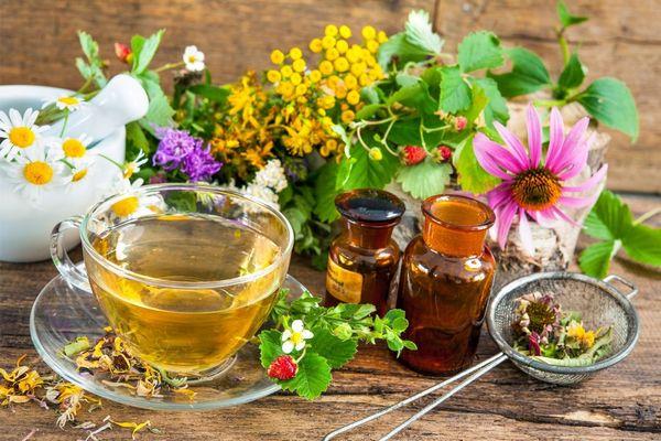Egy asztalon gyógynövények, kamilla, menta, bíbor kasvirág, szamócalevelek, mellette üvegcsészében gyógytea.