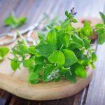 Gyógynövények az egészségünk szolgálatában