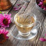Immunrendszer fokozása bíbor kasvirággal, C-vitaminnal és cinkkel