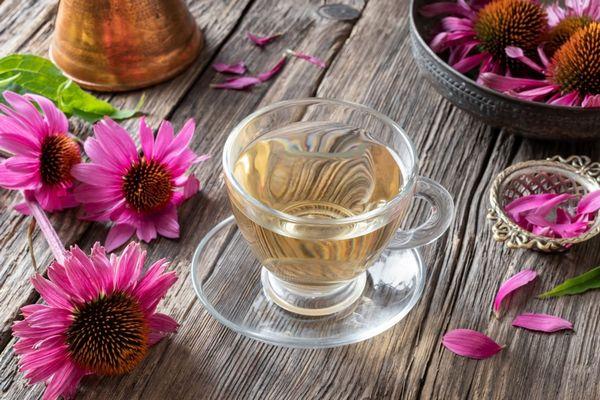 Egy asztalon bíbor kasvirágok és szirmok, mellette egy üvegcsészében bíbor kasvirágból készült tea.