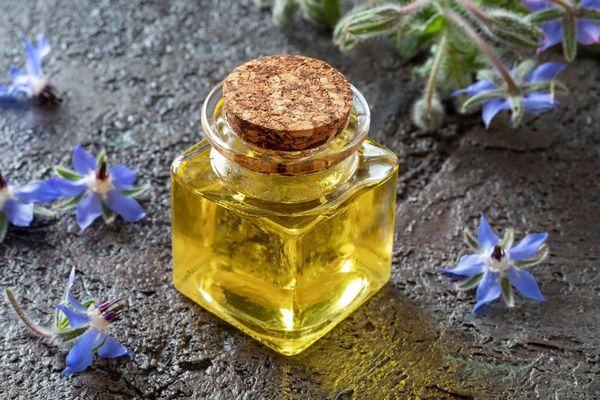 Egy üvegben borágóolaj üvegcsében, mellette borágóvirágok.