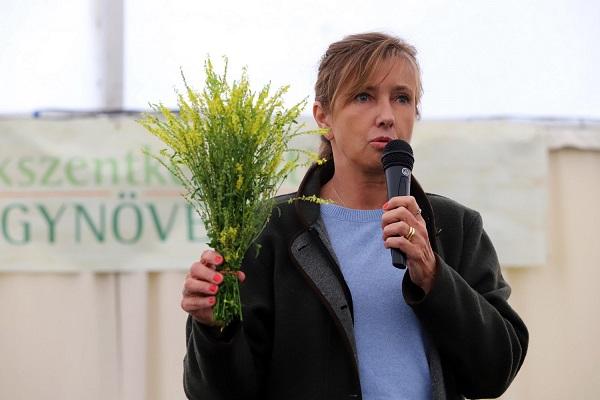 Szabó-Lopes Zsuzsa, fitoterapeuta mikrofonnal a kezében egy gyógynövényt felemelve nyilvános helyen beszél.