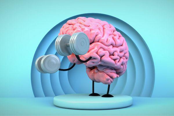 Egy imitált rózsaszínű agy imitált súlyzókat emelget.