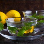 Miért fogyasszunk rendszeresen citromfüvet?