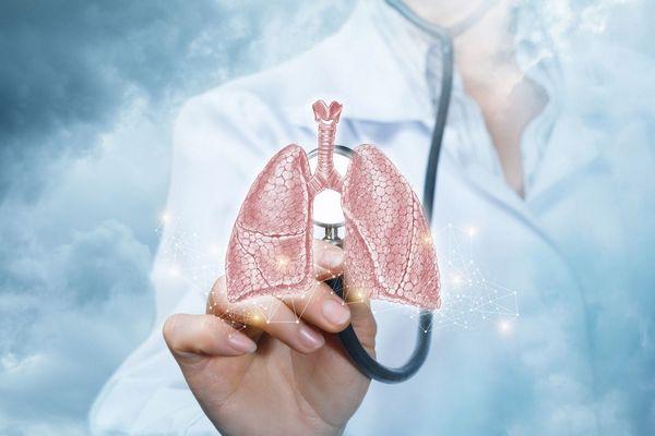 Egy orvos fehér köpenyben fonendoszkópját egy imitált tüdőre helyezi.