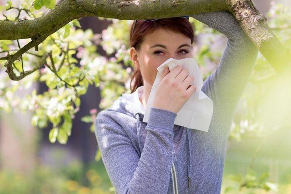 Fiatal allergiás nő a természetben egy gyümölcsfa alatt áll, bal kezével a fában kapaszkodik, jobb kezével papír zsebkendőbe fújja az orrát.