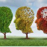 Léteznek gyógynövények a demenciára!