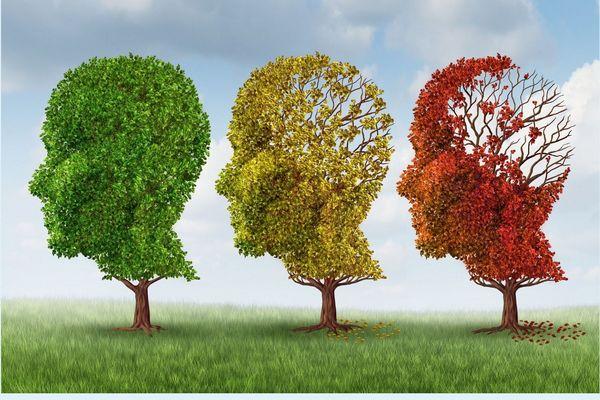 Demenciát szimbolizáló kép, melyen három különböző színű fa áll, zöld, sárga és piros, melyek folyamatosan elveszítik a leveleiket.
