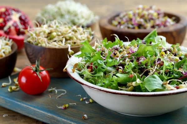 Egy asztalon tálban lucernacsíra, mellette lucernacsírát tartalmazó saláta és paradicsom.
