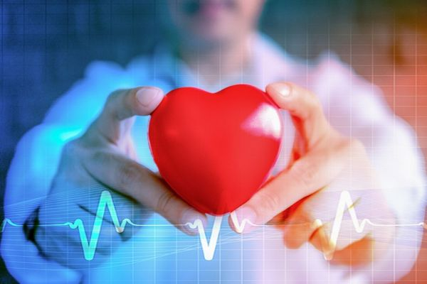 Egy fehér köpenyes orvos a két kezét előrenyújtva egy piros szívet tart.