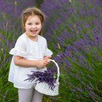 Lila és a rózsaszínű növények, amelyek gyógyítanak is