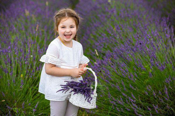 Egy fehér ruhás kislány egy levendulamezőn állva nevet, kezében fehér kosár, tele levendulavirágokkal.