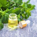 Növényi gyógyítók a konyhából 2. rész