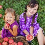 Tüdőt gyógyító és támogató gyógynövények, táplálékok