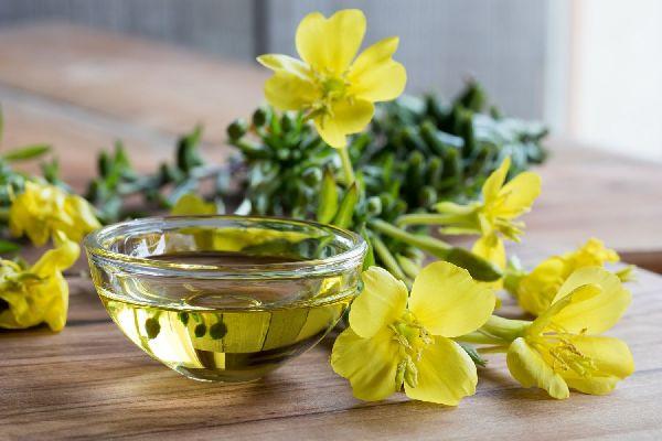 Egy asztalon ligetszépeolaj egy üvegtálban, mellette ligetszépevirágok.