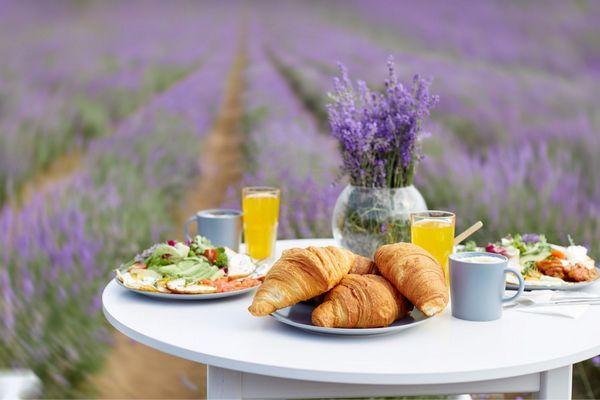 Egy levendulamezőn egy fehér asztalon croissanok, gyümölcslevek pohárban, levendulás őszibarackos saláta.