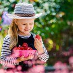 Az eper ezernyi előnye – egészséges epersaláta receptje