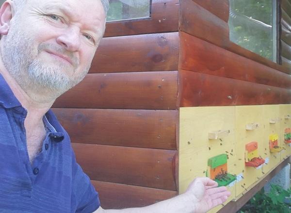 Trepinszki József fitoterapeuta egy méhkaptár mellett áll, a méhekre mutat.