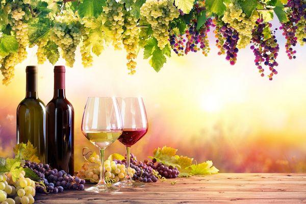 Naplemente háttér előtt két üveg bor, mellettük két üvegpohárban fehérbor és vörösbor.