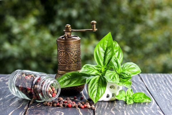Egy asztalon fűszerek és gyógynövények, bazsalikomlevelek, mellette borsőrlő és egy üvegben színes borsszemek.