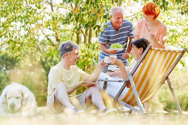 Kint a természetben két idősebb házaspár egy kutyával piknikezik, mindannyian egészséges ételeket fogyasztanak.