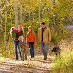 A gyaloglás segít a szívbetegségek megelőzésében
