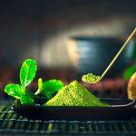Növényi alapú gyógyítás csupa zöld táplálékokkal