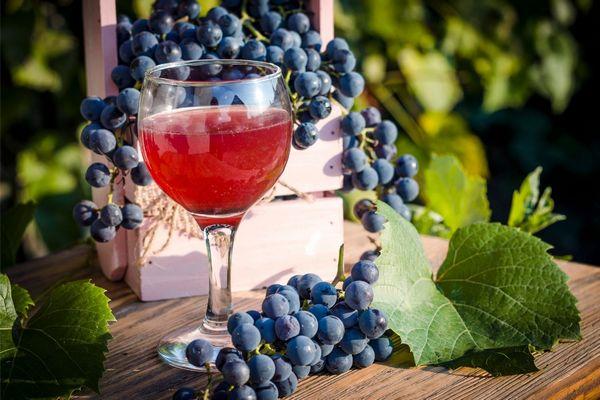 Egy üveg pohárban vörösbor, mellette fekete szőlő.